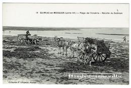 CPA - 44 - QUIMIAC EN MESQUER - Récolte Du Goëmon Plage De L'Anséria - Attelage De Chevaux Et Bovins - Métier De La Mer - Unclassified