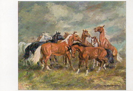 DC2149 - Ak Pferde Pferd Horse Wiechmann Bildkarten Hans M. Friedmann Vor Dem Gewitter - Caballos