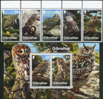 GIBRALTAR 2020 Owls Birds Of Prey Animals Fauna MNH - Eulenvögel