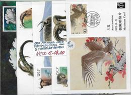 FORMOSA ʘ 1987, MAXIMUM CARD, 5 CARTOLINE ANIMALI - Formosa