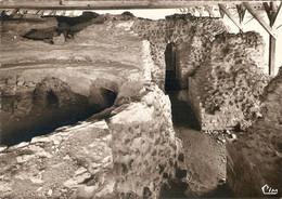 CPSM 86 SANXAY RUINES GALLO ROMAINES THERMES VUE PARTIELLE DU SUDATORIUM   CIM Beau Plan Rare - Sonstige Gemeinden