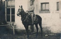 Carte-Photo  : Portrait Militaire : Dragon à Cheval (2) - Guerra, Militares