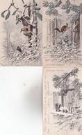 CPA Illustrateur Signée ,M.M.VIENNE N°117 ( Ecureuil , Oiseaux,) ) 3 Cartes écrites En 1902   ,( Signées : E.Dôcker ,) - Doecker, E.
