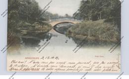 0-3000 MAGDEBURG, Rote Horn, 1901 - Magdeburg