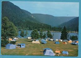"Lac De Longemer - Camping ""Les Jonquilles"" Austin A60 Cambridge Opel Oympia 1955 Rekord P1 Citroen DS Autos - Sonstige Gemeinden"