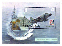 Ref. 235148 * NEW *  - FALKLAND Islands . 2009. CENTENARY OF BRITISH FLEET AIR ARM. CENTENARIO DE LA AERONAVAL BRITANICA - Falkland