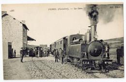 Primel - La Gare - Train Locomotive à Vapeur- Ligne Chemin De Fer Finistère - Animée - Primel
