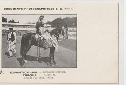 EXPO1900  KADDO ETALON PUR SANG ARABE - Paarden
