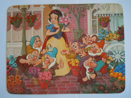 Snow White's Fantasy Bouquet Sneeuwwitje En De 7 Dwergen Blanche Neige Circulée Orlando 1988 Form. 17,2 X 13 Cm - Disneyworld