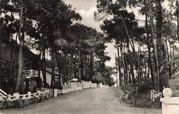 QUIMIAC En MESQUER - Avenue Dans Les Bois - Other Municipalities