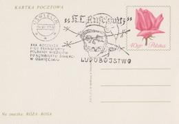 Skull  German  Concentration Camp Judaica Jews, Holocaust Special Cancel / Postmark Poland - Jewish