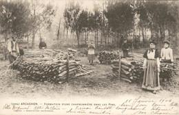 France - Frankrijk - Arcachon - Charbonniere Dans Les Pins - 1906 - Arcachon