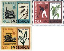 Ref. 44028 * NEW *  - POLAND . 1963. WORLD CAMPAIGN AGAINST HUNGER. CAMPA�A MUNDIAL CONTRA EL HAMBRE - Nuovi