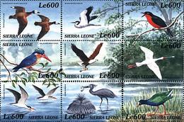 Ref. 370329 * NEW *  - SIERRA LEONE . 2000. BIRDS OF AFRICA. AVES DE AFRICA - Sierra Leone (1961-...)