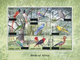 Ref. 372405 * NEW *  - SIERRA LEONE . 2008. BIRDS. AVES - Sierra Leone (1961-...)