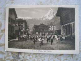 CPA  Zermatt  Suisse  Départ Des Chèvres - Zonder Classificatie