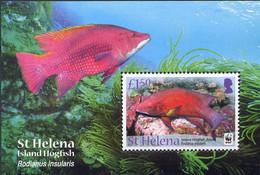 Ref. 268276 * NEW *  - ST. HELENA . 2011. MARINE FAUNA. WWF. FAUNA MARINA. WWF - Isla Sta Helena