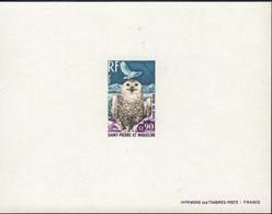 Ref. 578559 * NEW *  - ST. PIERRE AND MIQUELON . 1973. BIRDS. AVES - Ohne Zuordnung