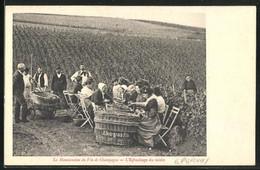 CPA Épernay, La Manutention Du Vin De Champagne, L`Épluchage Du Raisin, Bauern Bei Der Weinernte - Sin Clasificación