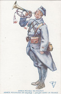 Guerre 1914 :  Uniforme De L'Armée Polonaise -  Illustrateur - Rare - Guerre 1914-18