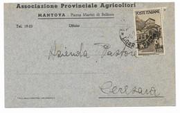 DA MANTOVA A CERESARA  - 6.2.1946  -  USO ISOLATO -AVVENTO DELLA REPUBBLICA. - 1946-60: Marcophilia
