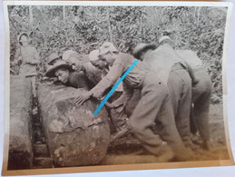 1930 Cayenne Bagne Bagnard Bucheronnage Bucherons Ile Du Diable Prison Prisonniers Relégués Relégation Déportés  2photos - Oorlog, Militair