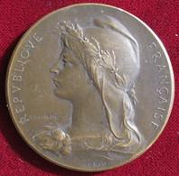 Medaille Assistance Publique, 17em Arrondissement à M. Sinet Commissaire 1908, Par Rivet - Other