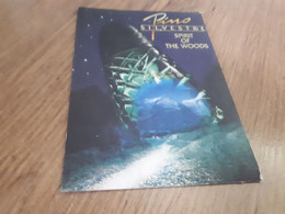 Postcard - Pino Silvestre  (V 35057) - Altri
