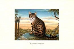 CPM - CHAT - Illustration Bernard VERCRUYCE - Lot De 2 Cartes - Edition Céline Carterie - Cats