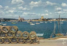 29  Finistère  -  Camaret  -  Port  De  Pêche  Langoustier  -  Les  Casiers  à  Langoustes  Sur  Le  Port - Camaret-sur-Mer