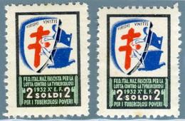 E 14 - 2 CHIUDILETTERA 2 SOLDI PER I TUBERCOLOSI POVERI 1932 - Cinderellas