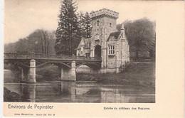 Pepinster  - Entrée Du Chateau Des Mazures Nels 96/9 - Pepinster