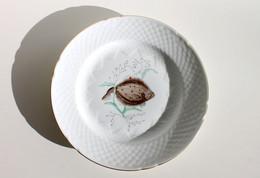 MAGNIFIQUE ANCIENNE ASSIETTE - COPENHAGUE PORCELAINE B & G DENMARK - POISSON N°3 RODSPAETTE - Plates