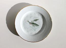 MAGNIFIQUE ANCIENNE ASSIETTE - COPENHAGUE PORCELAINE B & G DENMARK - THÈME: POISSON N°1: SILD - NEUF - Plates
