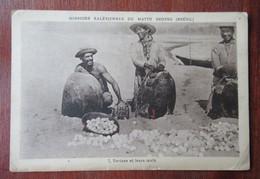 Missions Salésiennes Du Matto Grosso - Tartarugas E Seus Ovos - Tortues Et Leurs Oeufs - Other