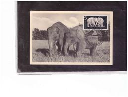 TEM12658  -  BERLIN 14.12.1956    /    FDC MAXIMUMCARD  MICHEL NR. 551/556 - Cartes-Maximum (CM)