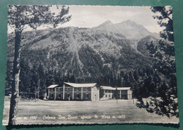 Ayas ,Colonia Don Bosco , Sfondo Monte Rosa  # Cartolina Viaggiata  90/7/1962 Destinazione S. Benigno Canavese - Sin Clasificación