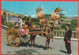 Carretto Siciliano, Sizilianischer Karren, Pferd, Tracht - Unclassified