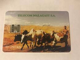 2:199 - Madagascar - Madagascar