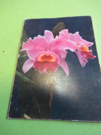 Petit Calendrier De Poche / Interflora / Fleurs/ Robert Féron/ GARCHES/  1969             CAL474 - Tamaño Pequeño : 1961-70