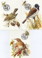 BUZIN N° 2424/2426  Oiseaux (3 Cartes) - 1991-2000