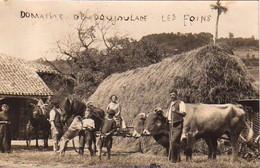 S47-013 Carte Photo - Blaymont - Domaine De Poujoulade - Les Foins - 1928 - Otros Municipios