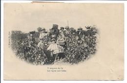 GY - Las Vignes Sont Belles - Otros Municipios