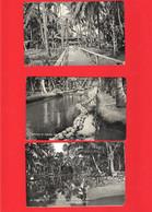 BELGIUM CONGO   3 CARDS   ADVERT FOR  LA COCOLINE BEURE - Other