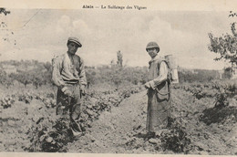 CPA-30-ALAIS-ALES-Le Sulfatage Des Vignes-Gros Plan - Alès
