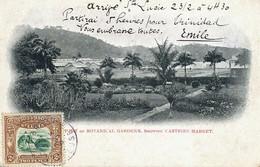 St Lucia . Sainte Lucie .Part Of Botanical Gardens Showing Castries Market . Nice Stamp 1902  To La Souterraine Creuse - Saint Lucia