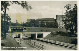 AK Mannheim, Partie Im Schloßgarten - Mannheim