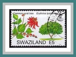 (789) Swaziland 2007 O Used/Gestempelt (A-7-18) - Swaziland (1968-...)