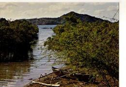 Mayotte Mangrome A Passamanti - Mayotte