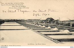D17  ILE D'OLERON  Les Marais Salants - Ile D'Oléron